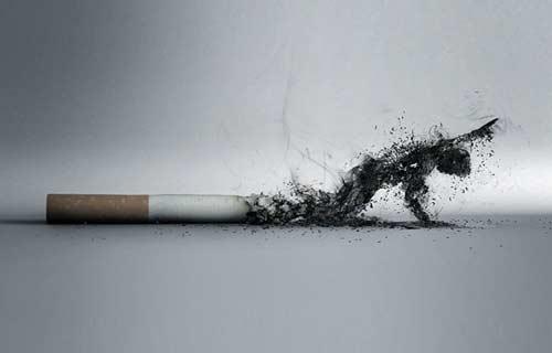 烟灰 -- 伤害你的人不是我